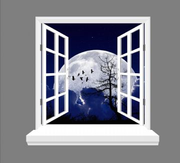 Moon and birds 3D Window view, wall art sticker